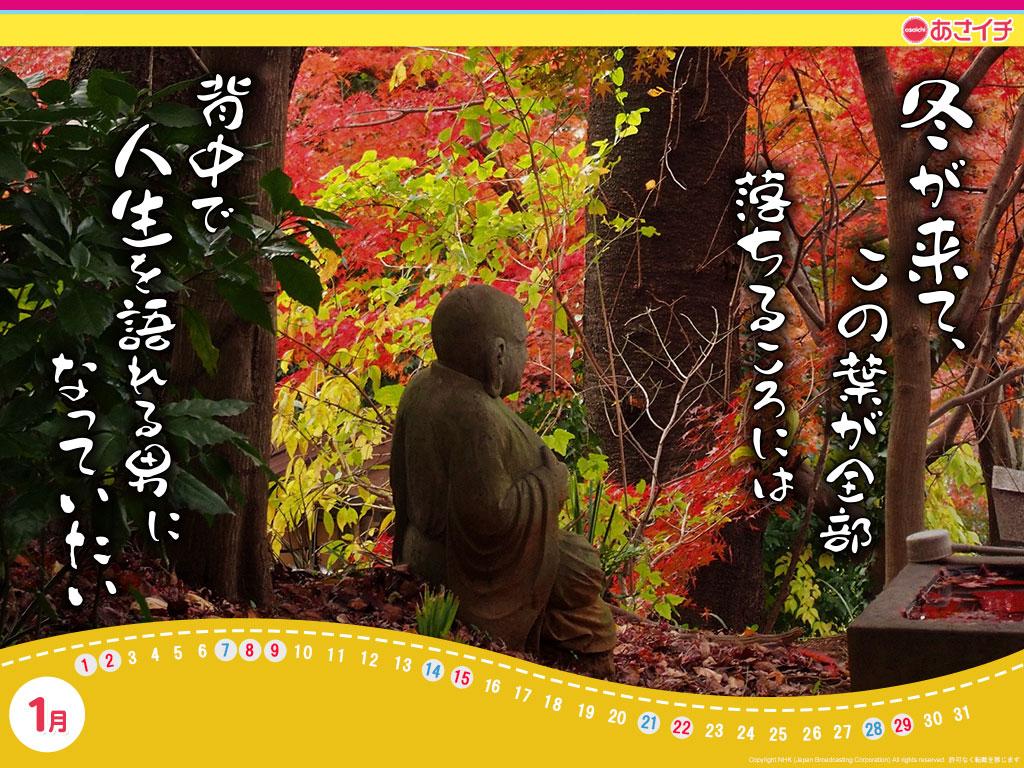 f:id:akaibara:20161220163132j:image:w550