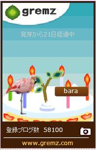 f:id:akaibara:20170119161257j:image