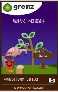 f:id:akaibara:20170202204502j:image:w150