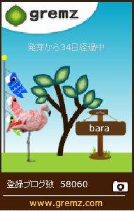 f:id:akaibara:20170430122934j:image:w170