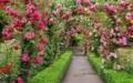 「ブッチャート・ガーデンのバラ園」カナダ