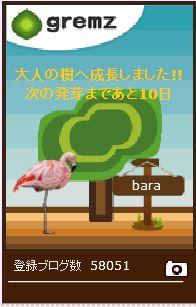 f:id:akaibara:20170612162840j:image:w150