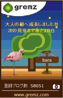 f:id:akaibara:20170612213425j:image:w150