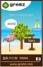 f:id:akaibara:20170828130132j:image