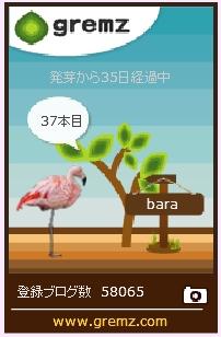 f:id:akaibara:20171025163505j:image:w170