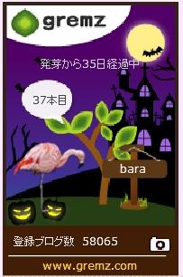 f:id:akaibara:20171025204927j:image:w200