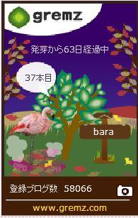 f:id:akaibara:20171123175802j:image