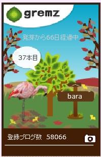 f:id:akaibara:20171125154910j:image:w170