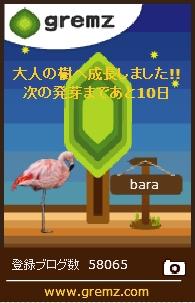 f:id:akaibara:20171206221839j:image:w150