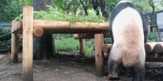 f:id:akaibara:20171219230039j:image:w450