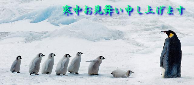 『コウテイペンギンの学校』