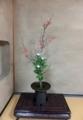 寺2・14木瓜
