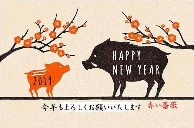 f:id:akaibara:20190101213547j:image:w516