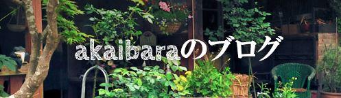 f:id:akaibara:20190208231455j:plain