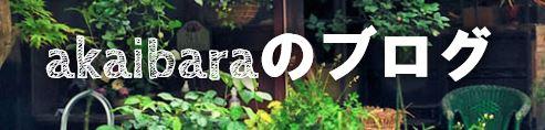 f:id:akaibara:20200221170100j:plain