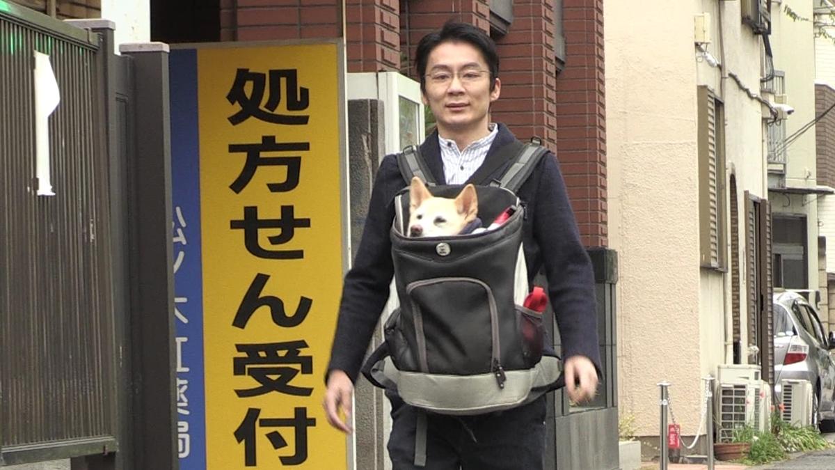 f:id:akane-yama:20200620112752j:plain