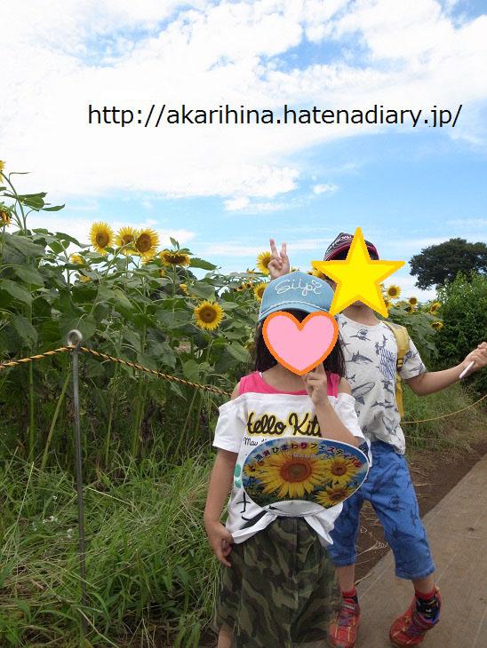 f:id:akarihina:20170910230342j:plain