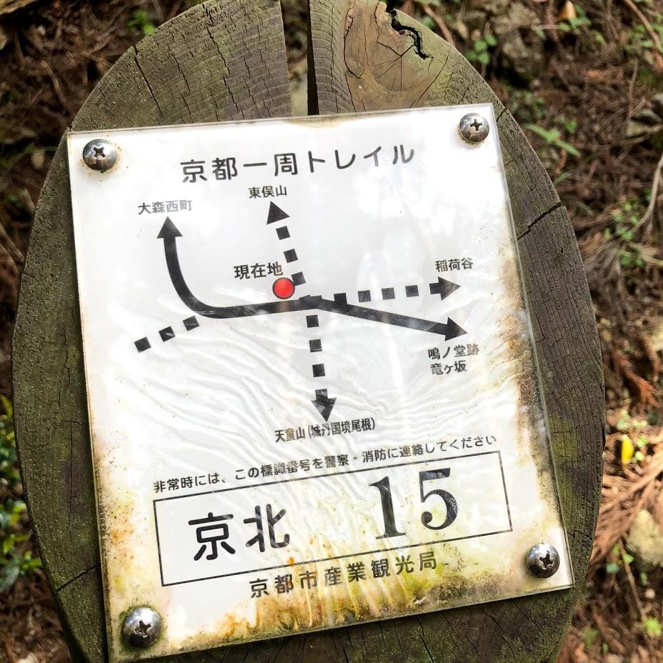 f:id:akasakaki:20200524000212j:plain
