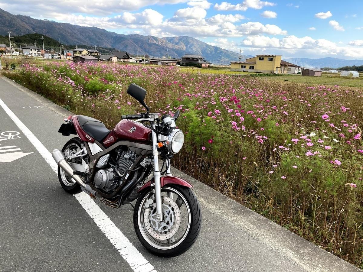 f:id:akasakaki:20201129201307j:plain