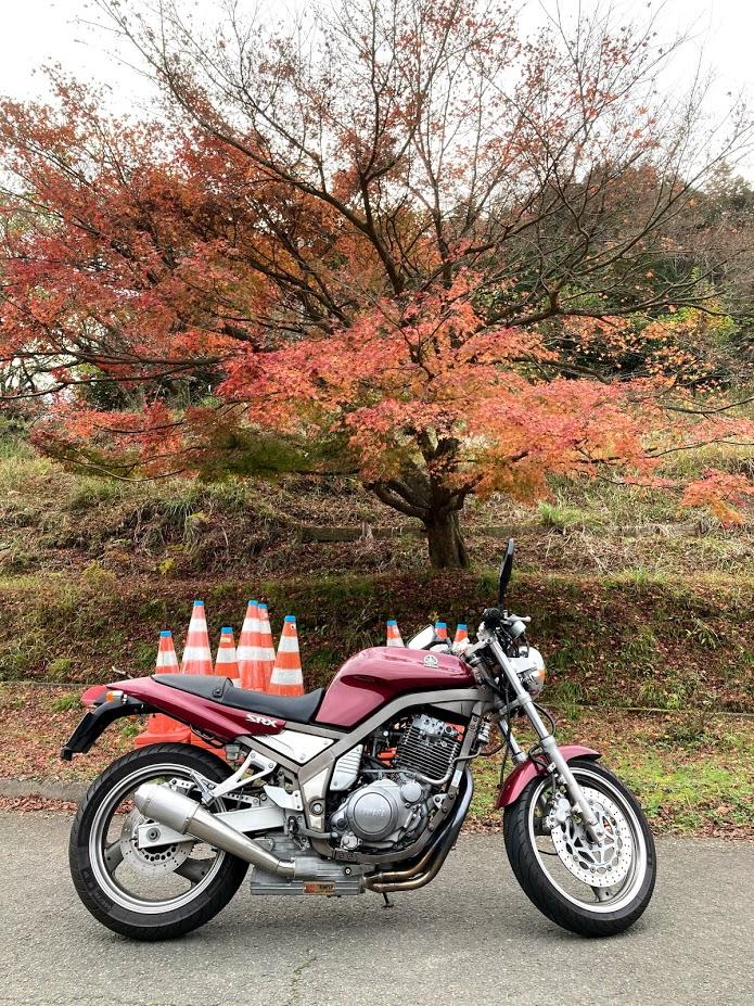 f:id:akasakaki:20201129202208j:plain