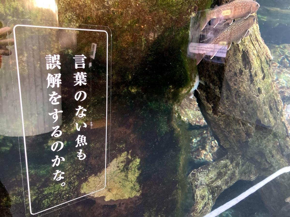 f:id:akasakaki:20201223194356j:plain