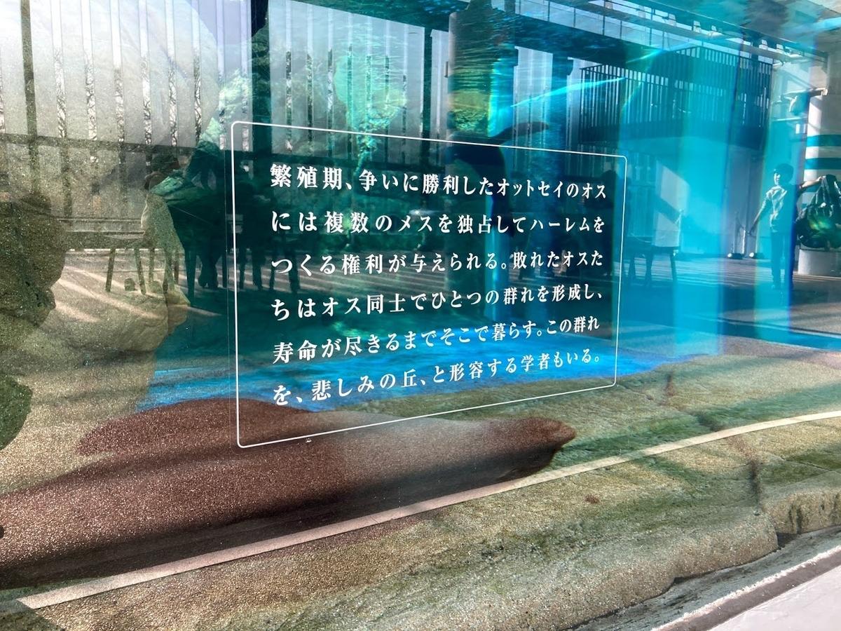 f:id:akasakaki:20201223195640j:plain