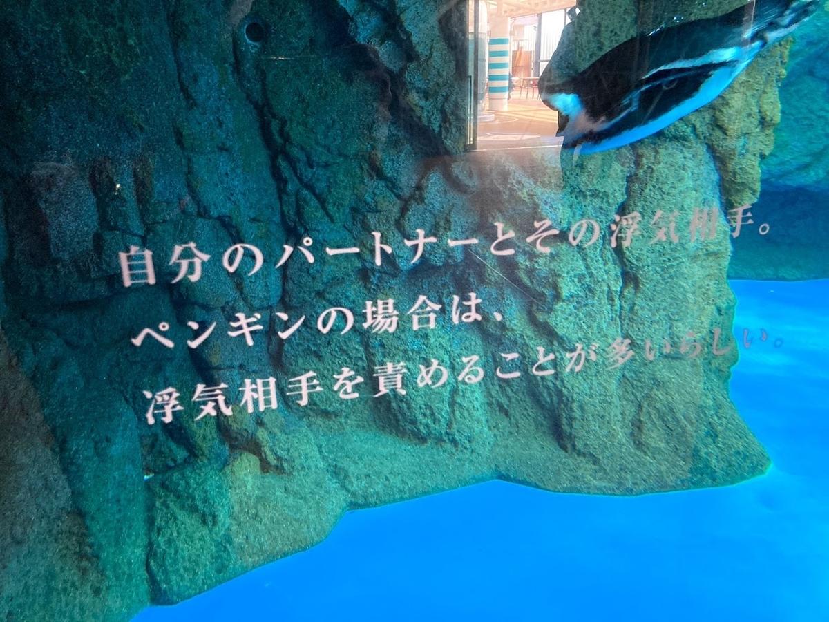 f:id:akasakaki:20201223195852j:plain