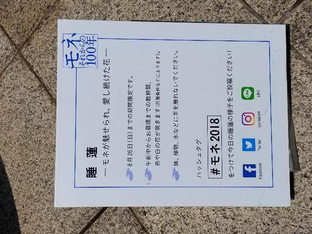 f:id:akashiaya:20180721121220j:image