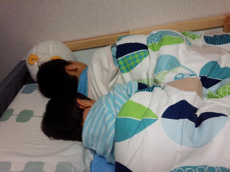 f:id:akasugu:20150428085649j:plain