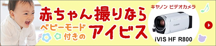 f:id:akasugu:20170223151901j:plain