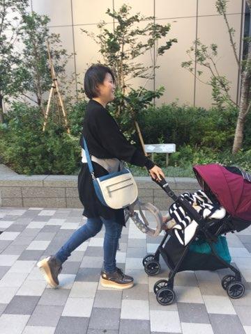 f:id:akasugu:20181022212934j:plain