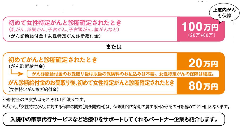 f:id:akasugu:20190206183705j:plain