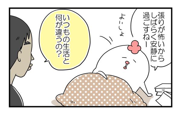 f:id:akasuguope02:20160208224349j:plain