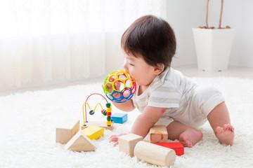 いろんな玩具を試し続けた1年間。我が家の赤ちゃんが気に入った玩具5選