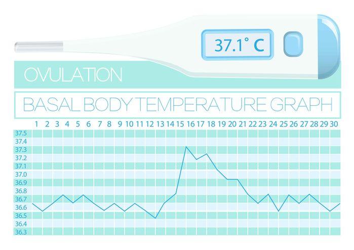 高温 期 と は