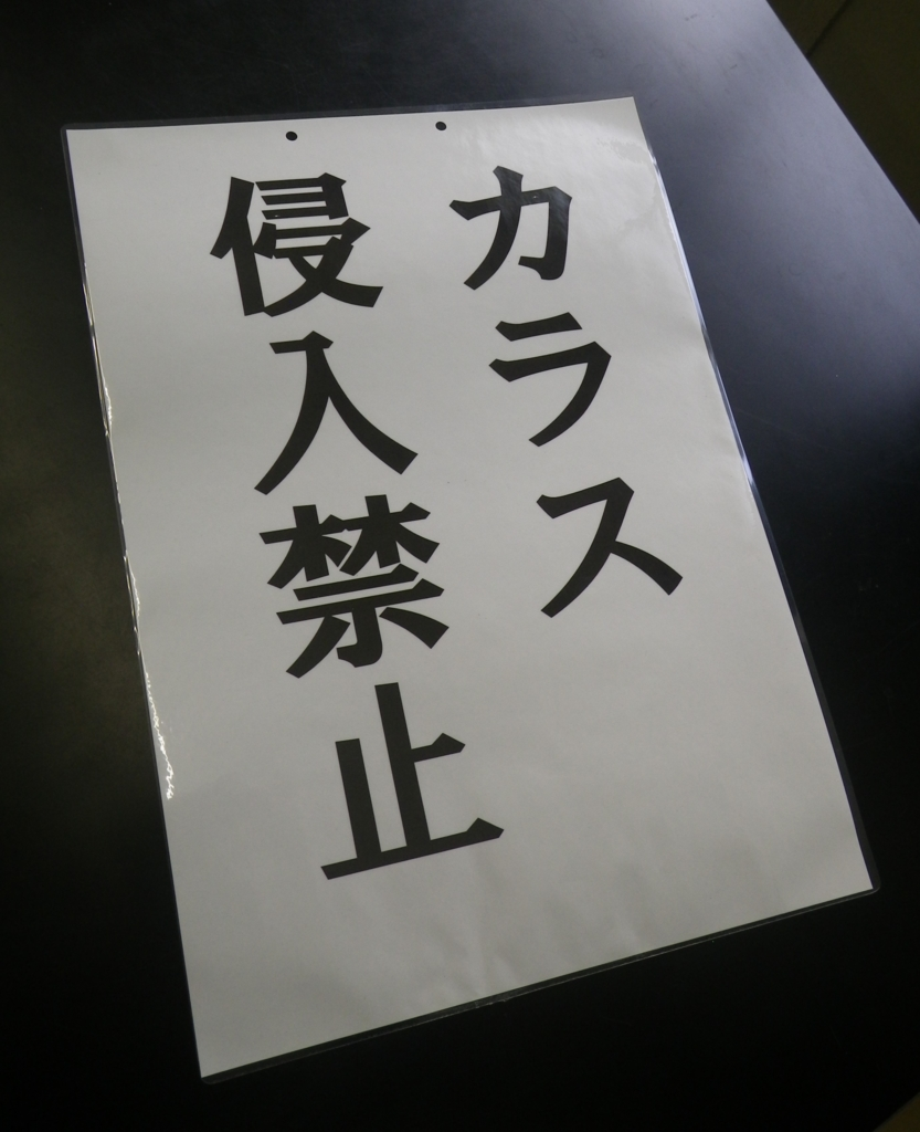 f:id:akatsukaa:20170522235059j:plain