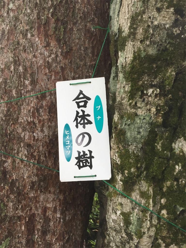 f:id:akatsukayama:20180302001957j:image