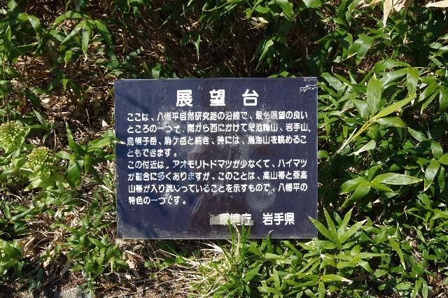 f:id:akatsukayama:20191119174854j:image