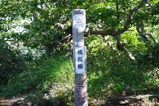 f:id:akatsukayama:20200114174434j:image