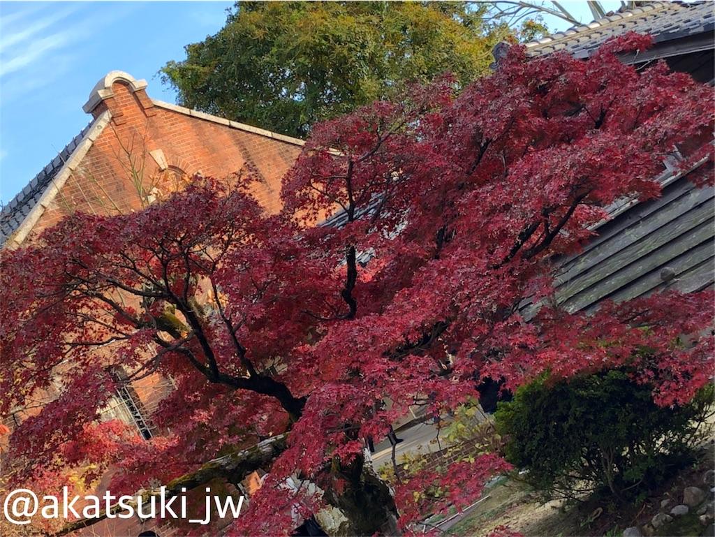 f:id:akatsuki_JW:20190125191202j:image