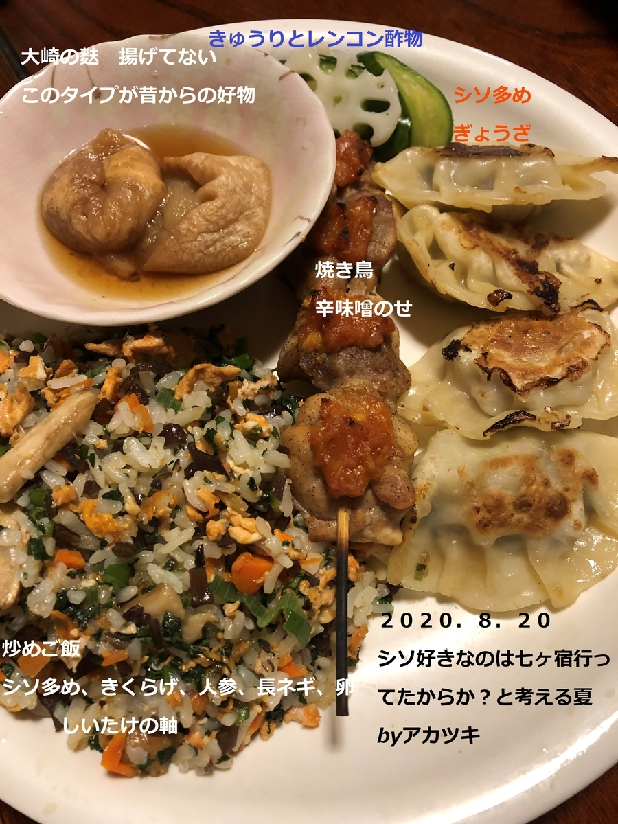f:id:akatsuki_bigdeta806z:20200902201214j:plain