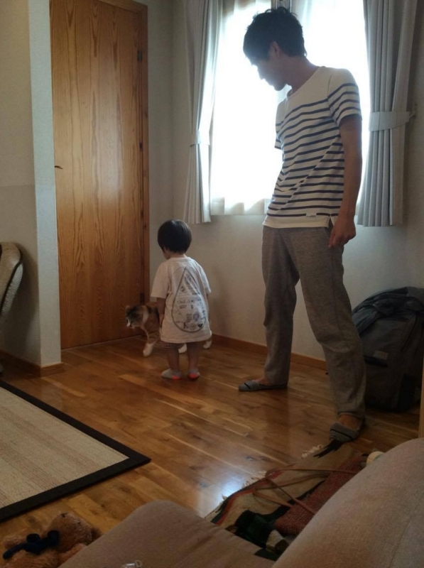 f:id:akatsuki_jp:20160707124153j:plain