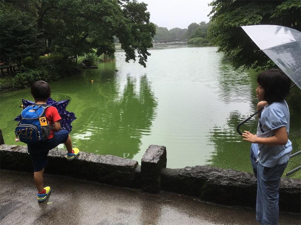 f:id:akatsuki_jp:20190711004719j:image