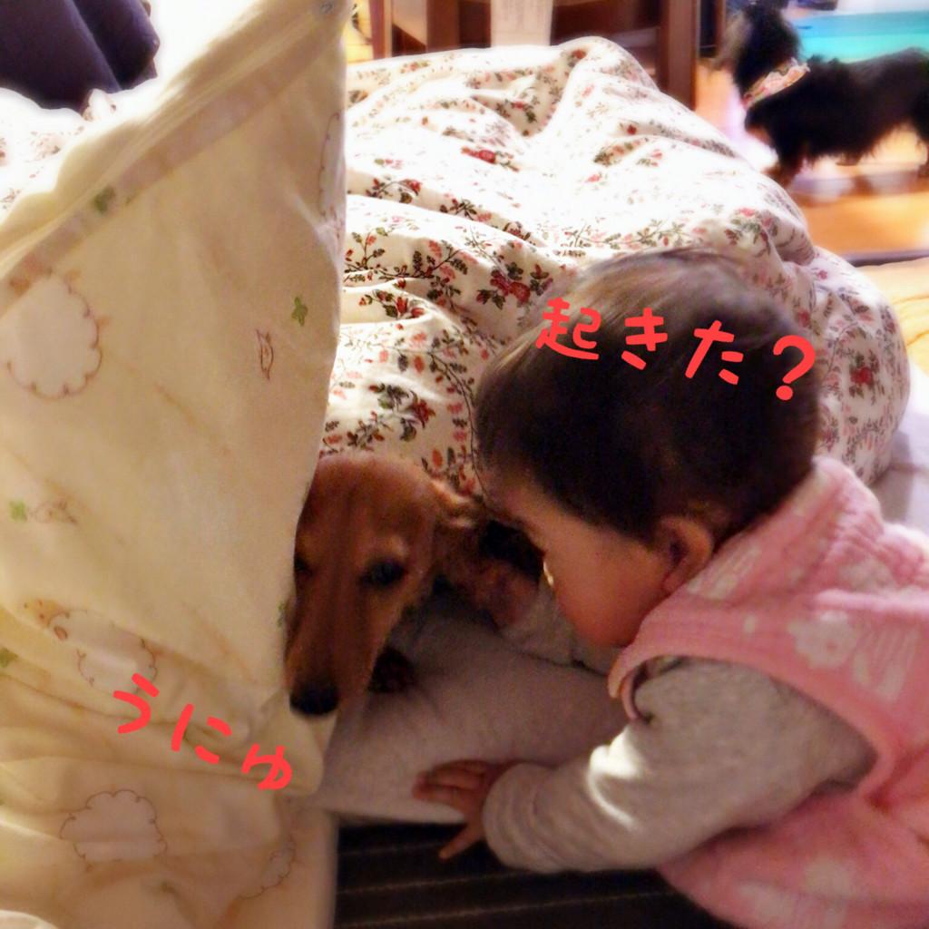 f:id:akatuki_sato:20180126135108j:plain