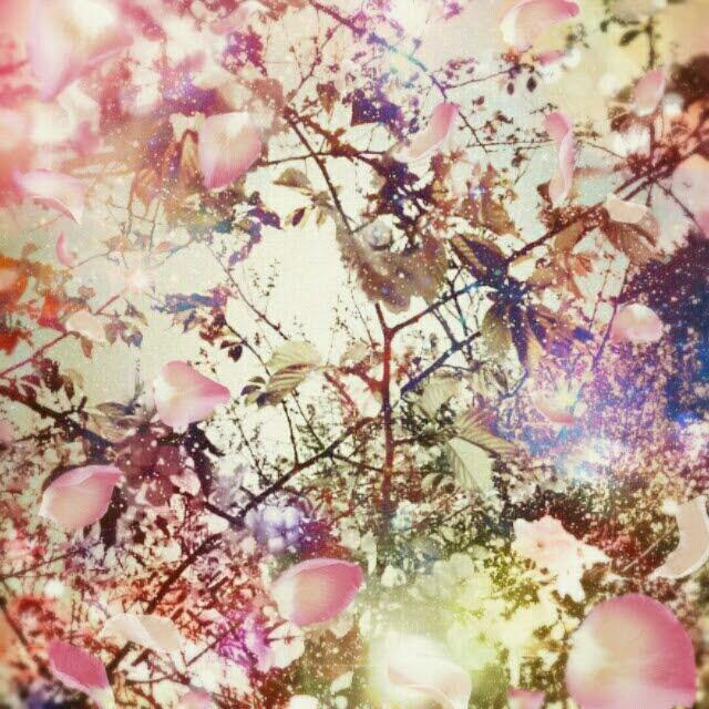 女神の花園