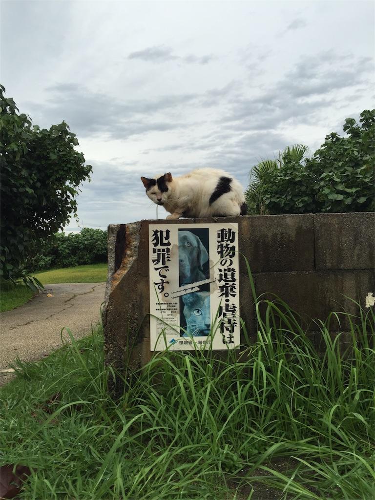 f:id:akegatanoneko:20160909004141j:image
