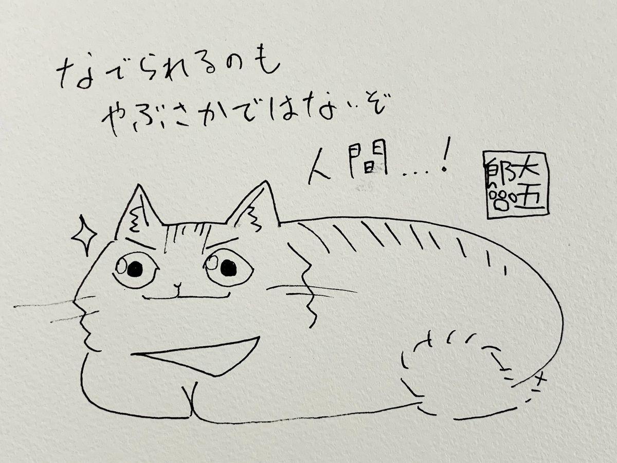 f:id:akemi_12mg:20210208172015j:plain