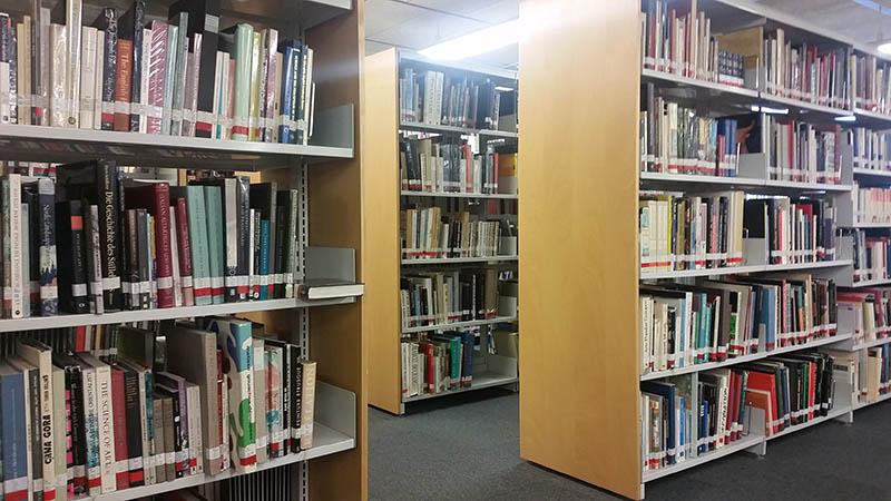 Biblioteca UPF