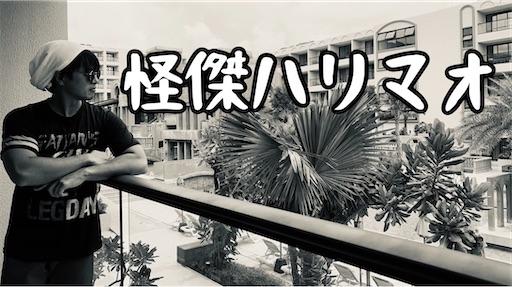 f:id:aki-ono:20210612060231j:image