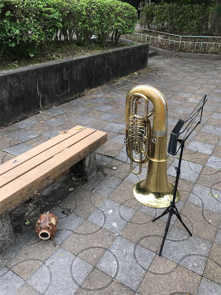 f:id:aki-washoitubayaro:20170628140150j:image